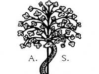 albero_della_sapienza_digital_service.jpg