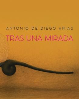 antonio_de_diego_arias_tras_una_mirada_catalogo_della_mostra.jpg