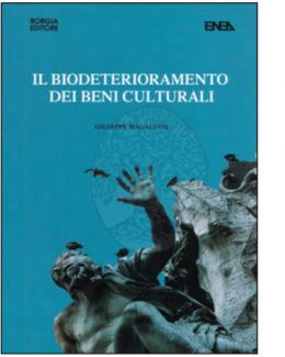 il_biodeterioramento_dei_beni_culturali_g_magaudda.png
