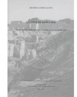 la_tour_de_babylone_etudes_et_recherches_sur_les_monuments_de_babylone_documenta_asiana_x_b_andr_salvini_dir.jpg