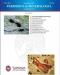 periodico di mineralogia vol 80 2   september 2011