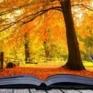 as bollettino bibliografico autunno 2019