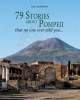 79 stories about pompeii that no one ever told you  anniboletti lara