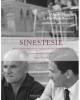 alberto moravia e pier paolo pasolini intellettuali scrittori amici   rivista sinestesie anno 2013 quad 11