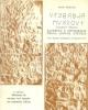 alfabeto e ortografia della lingua etrusca boriosi