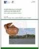 antichi romani e romanit nelle terre del delta del po nuovi studi e prospettive di ricerca