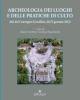 archeologia dei luoghi e delle pratiche di culto   bibliotheca archeologica 32