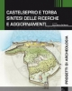 castelseprio e torba sintesi delle ricerche e aggiornamenti    progetti di archeologia 14
