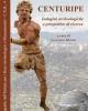centuripe indagini archeologiche e prospettive di ricerca