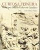 curiosa itinera scritti per daniela gallavotti cavallero   enz