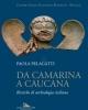 da camarina a caucana  ricerche di archeologia siciliana   paola pelagatti