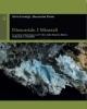 dioscoride i minerali la sezione mineralogica nel v libro della materia medica traduzione e commento