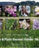 famiglie di piante vascolari italiane 106 140