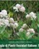 famiglie di piante vascolari italiane 1 140
