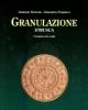 granulazione etrusca unantica arte orafa   gerhard nestler edilberto formigli