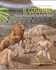 il colosseo storia e spettacoli dellanfiteatro flavio    belardini barbarella