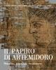 il papiro di artemidoro studio analisi restauro   maria letizia sebastiani e patrizia cavalieri a cura di