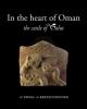 in the heart of oman the castle of salut   alessandra  avanzini