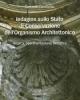 indagine sullo stato di conservazione dellorganismo architetto
