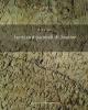 iscrizioni parietali di stabiae   antonio varone studi e ricerche del parco archeologico di pompei  40