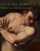 la luce del barocco dipinti da collezioni romane   francesco petrucci a cura di
