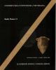 le iscrizioni fenicie e puniche dipinte   studia punica 13