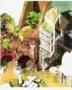le porte di roma ssebastiano s paolo tiburtina   renata bizzotto kappa