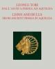 leoni e tori dallantica persia ad aquileia   catalogo della mostra 2016