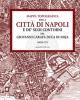 mappa topografica della citt di napoli e de suoi contorni del giovanni carafa duca di noja
