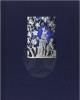 memorie del vaso blu    luigi spina  valeria sampaolo