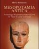 mesopotamia antica archeologia del pensiero creatore di miti nel paese di sumer e di accad   marco ramazzotti