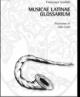 musicae latinae glossarium   francesco scoditti