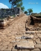 norba strade e domus   atlante tematico di topografia antica supplementi 20     stefania quilici gigli