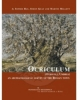 ocriculum otricoli umbria an archaeological survey of the roman town