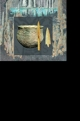 paesaggi cerimoniali   ricerca e scavi   atti del xi incontro di studi 2 voll    centro studi di preistoria e archeologia