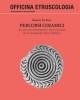 percorsi ceramici  analisi archeometriche e tecnologiche sulle ceramiche di santimbenia   beatrice de rosa