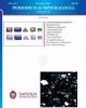 periodicodimineralogia813