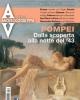 pompei e leuropa   archeologia viva  n 172 2015 luglio agosto