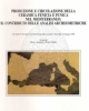 produzione e circolazione della ceramica fenicia e punica nel mediterraneo