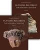 scavi del palatino 2 culti architettura e decorazioni in due volumi pensabene patrizio   studi miscellanei 39