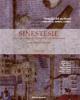 strategie del moderno narrativa teatro critica   rivista sinestesie