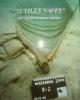 sutiles naves del mediterraneo antico   santi antonino moschella navi cucite