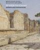 the multiple lives of pompeii surfaces and environments