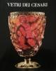 vetri dei cesari catalogo della mostra roma novembre 1988  gennaio 1989